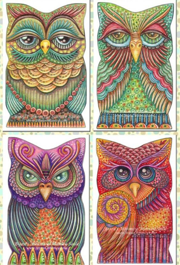 repeated owls
